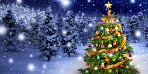 Vánoční přání mají kouzelnou moc